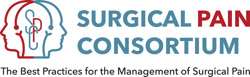 The Surgical Pain Consortium